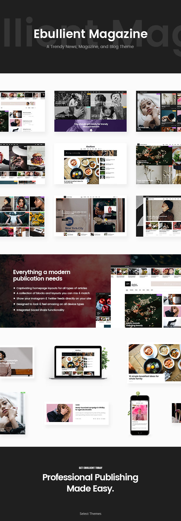 Ebullient - Magazine & News Theme - 1